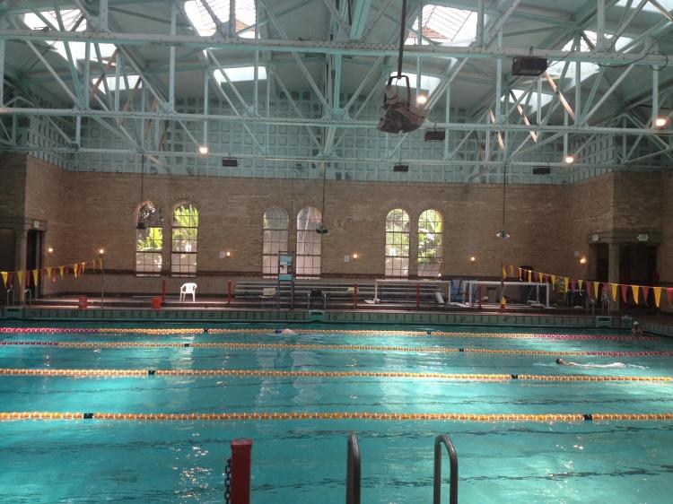USC PED Pool